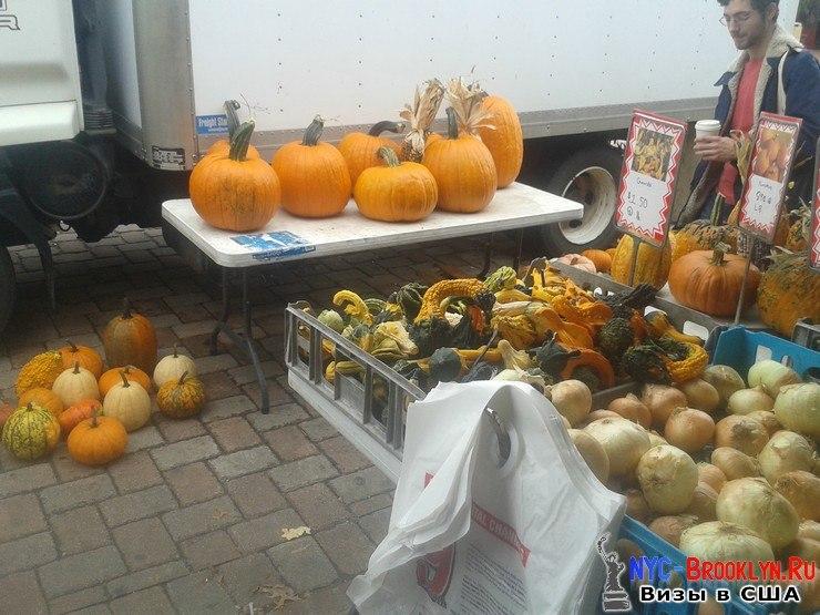 Тыквы, украшения, хэлоуин, хэллоуин, Halloween, праздник урожая, фото, Нью-Йорк, США, Вашингтон, NYC-Brooklyn